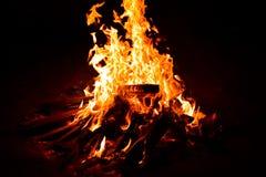 ognisko Zdjęcia Royalty Free