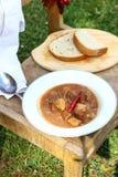 Ognisko gulaszu Plenerowy kucharstwo Zdjęcie Stock