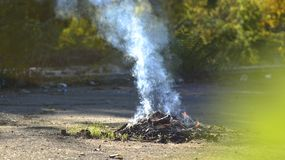 Ognisko na naturze Dym od ogienia ognisko Obraz Stock