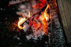 Ognisko noc outdoors Obraz Royalty Free
