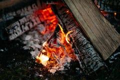 Ognisko noc outdoors Zdjęcie Royalty Free