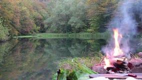 Ognisko obozu ogienia lata palenia ogień, ognisko/ zbiory