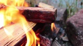 ognisko pali jaskrawy z chapnąć płonie brzeg rzeki zbiory