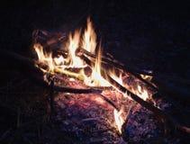 Ognisko przy nocą, płonący nieżywi drzewa, fotografia nabierająca UK obraz stock