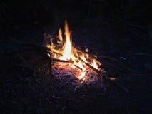 Ognisko przy nocą, płonący nieżywi drzewa, fotografia nabierająca UK zdjęcia stock