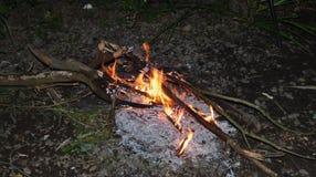 Ognisko przy nocą, płonący nieżywi drzewa, fotografia nabierająca UK fotografia royalty free