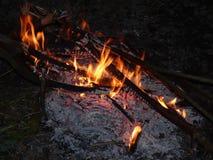 Ognisko przy nocą, płonący nieżywi drzewa, fotografia nabierająca UK zdjęcia royalty free