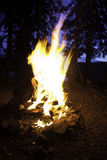 ognisko wieczór Zdjęcia Royalty Free