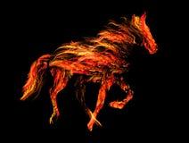 Ognisty koń Zdjęcie Stock