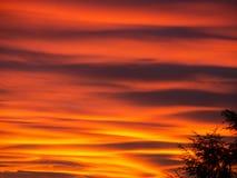Ognisty zmierzch podczas sezonu jesiennego Barwione chmury tworzy chmury i abstraktów kształty w niebie Obraz Stock