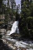 Ogołacać spadku lodowa parka narodowego Montana Obrazy Royalty Free