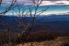 Ogołaca gałąź na Halnym Odgórnym Kolorowym Chmurnego nieba widoku Zdjęcie Royalty Free