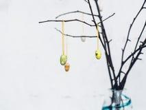 Ogołaca gałąź z kolorowymi Wielkanocnymi dekoracj jajkami Zdjęcia Royalty Free