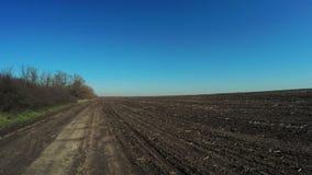 Ogołaca glebową wiosny naturę zdjęcie wideo