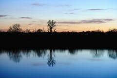 ogołaca odbijających rzeki wciąż zmierzchu drzewa Fotografia Stock