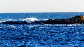 Ogołaca skałę w burzowym morzu na skała ptakach, Fotografia Royalty Free