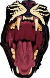 ogołacający zęby Zdjęcie Royalty Free
