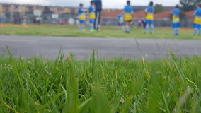Ogräs för Futbol lagträdgård Royaltyfria Bilder