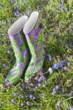 Ogródów buty Zdjęcia Royalty Free