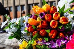 Ogródów kwiatów dziewczyny wakacyjny aromat Zdjęcia Royalty Free