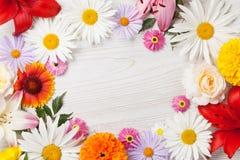 Ogródów kwiatów rama Obraz Stock