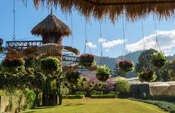 Ogródów projekty z wiszącym kwiatu garnkiem Obraz Royalty Free