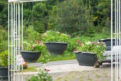 ogródów projekty z wiszącym kwiatu garnkiem w wysokim sezonie lub zimie Fotografia Royalty Free