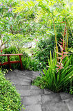 ogródów target189_0_ tropikalny fotografia royalty free