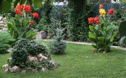 ogród obrazy royalty free