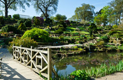Ogród Obraz Royalty Free
