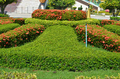 Ogród. Obrazy Royalty Free