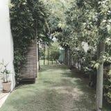 Ogród Obrazy Stock