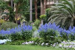 Ogród błękitny i biały Obrazy Royalty Free