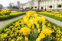 Ogród barokowy kasztel Zdjęcie Royalty Free