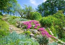 ogród botaniczny Kiev zdjęcia stock