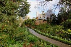 ogród botaniczny królewski Sydney sposób Fotografia Royalty Free