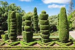 Ogród Botaniczny madera Zdjęcie Stock