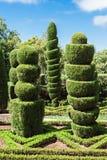 Ogród Botaniczny madera Obrazy Royalty Free