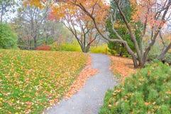 Ogród Botaniczny Montreal, Kanada - Obrazy Royalty Free