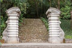 ogród botaniczny Paulo sao obrazy royalty free