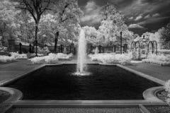 Ogród Botaniczny Pod Ominus Teksas niebem Obrazy Stock