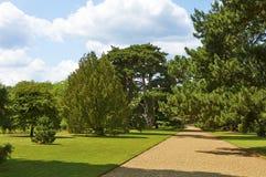 Ogród botaniczny w lecie obraz stock
