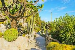 Ogród botaniczny w Monaco Obraz Stock