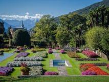 Ogród Botaniczny willa Taranto Włochy Zdjęcie Royalty Free