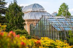 Ogród botaniczny z kolorowymi kwitnącymi różanecznikami i more=der obraz stock