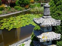 Ogród botaniczny z zielonymi roślinami Obrazy Stock