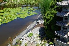 Ogród botaniczny z zielonymi roślinami Fotografia Royalty Free