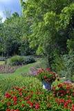 ogród bujny zdjęcia royalty free