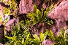 Ogród dekorujący z kamieniami i drzewami zdjęcia stock