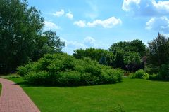 Ogród dla relaksować Obraz Royalty Free